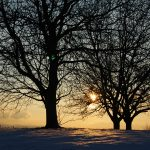 Winterstimmung 1 (Fischingen 2013)